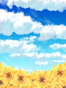 Background material of sky, clouds and sunflower (sunflower) 02