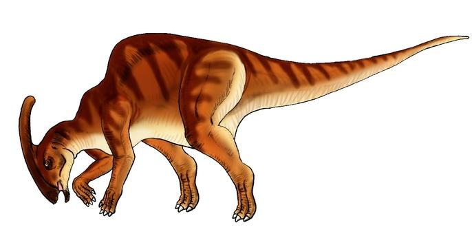 Eating grass or drinking water Herbivorous dinosaur 1