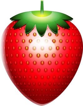 새빨간 열매 꼭지 된 딸기