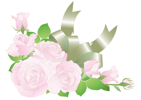 밝은 핑크색의 장미