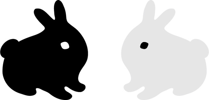 Black rabbits and white rabbits
