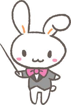 Command rabbit