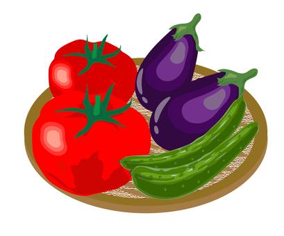 Illustration of summer vegetables