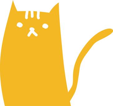 Cat _ Orange