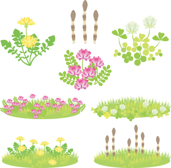春天的花朵设置01