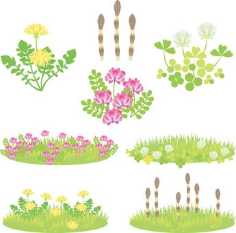 Spring flower set 01