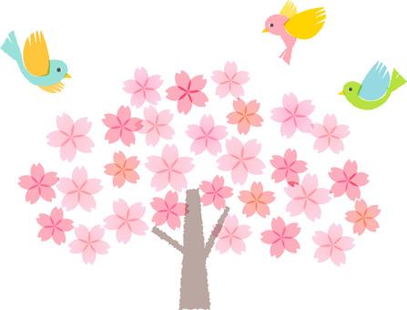200124.Sakura 1