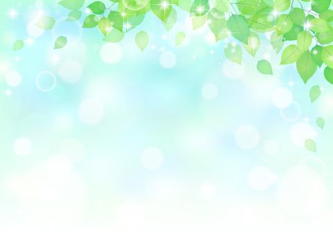 잎 317