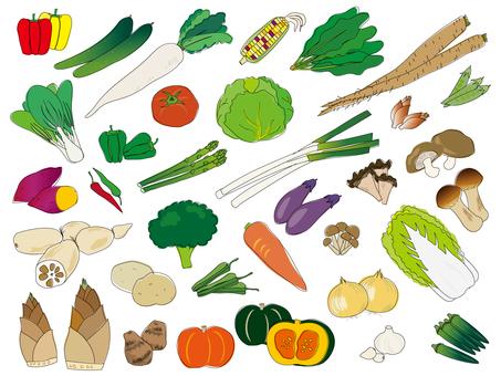 手描きの野菜