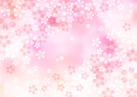 Sakura _ Pink background