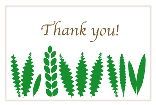 Green leaf Thank you card certificate of appreciation