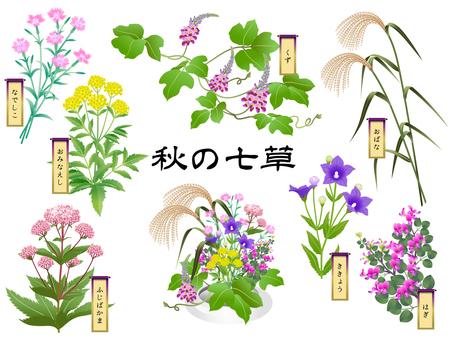 Autumn seven herbs