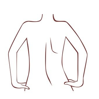 Naked women's back drawing