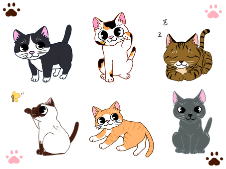 6 cats packed with cats