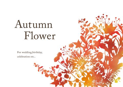 Plant silhouette autumn