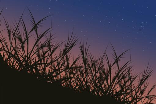 Night slide