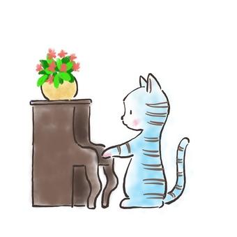 Piano cat 29