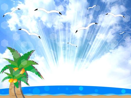 Summer Background 01