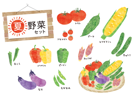 Summer vegetable set