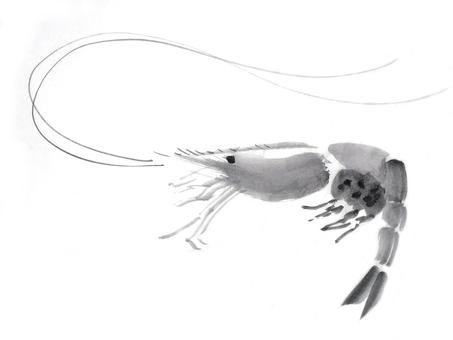 Shrimp ink painting