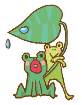 비오는 날 개구리