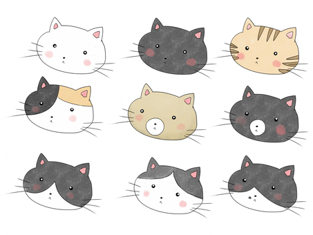 Various patterns of cats 2