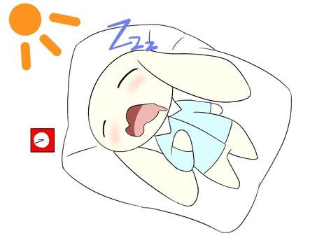 Nap rabbit
