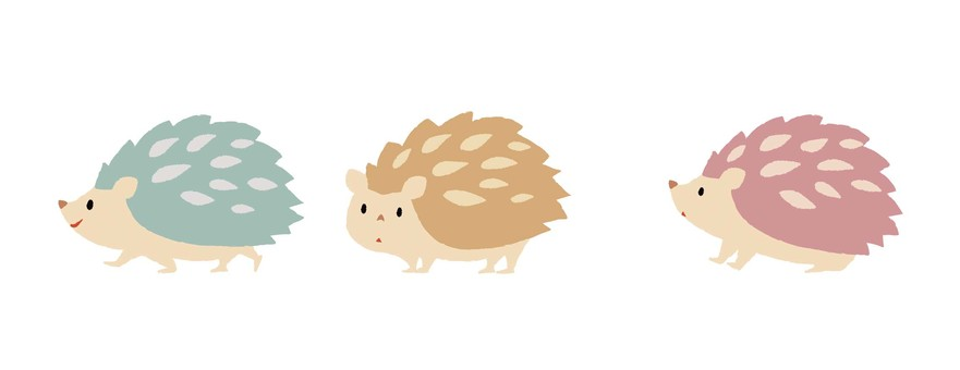 Three hedgehogs