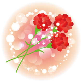 Carnation background 032202