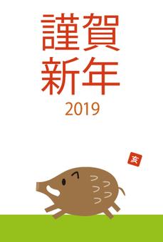 New Year cards 2019 Hai Lawn lawn 2-4
