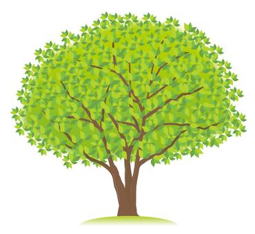 1 green tree
