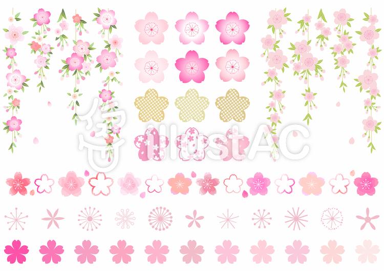 桜セット01のイラスト
