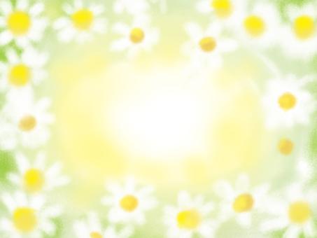 Hana flower flowers
