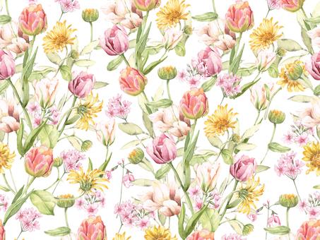 Flower frame 353 - Spring tulip flower frame