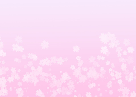 Sakura pink gradation