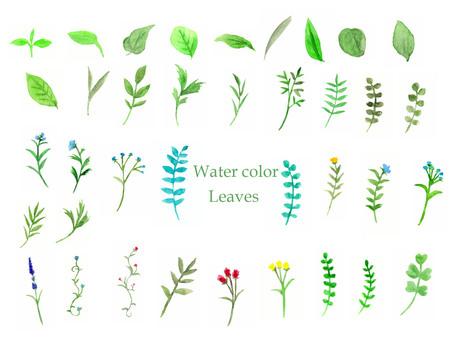 葉セット02(水彩手描き)