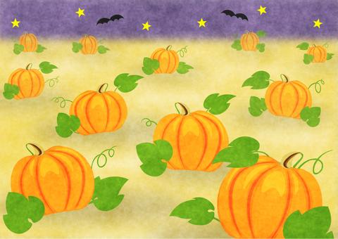 Halloween pumpkin field