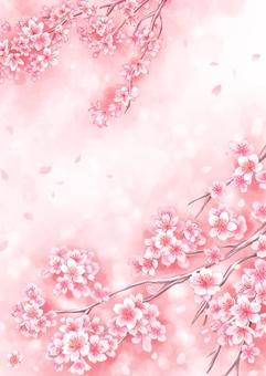 桜水彩風 背景