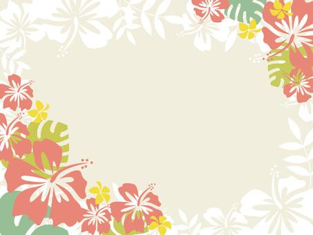 平靜的夏威夷框架