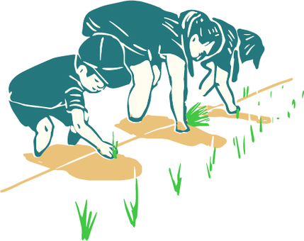 General people who plant rice
