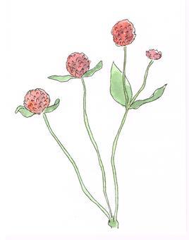 Sennichiko Watercolor