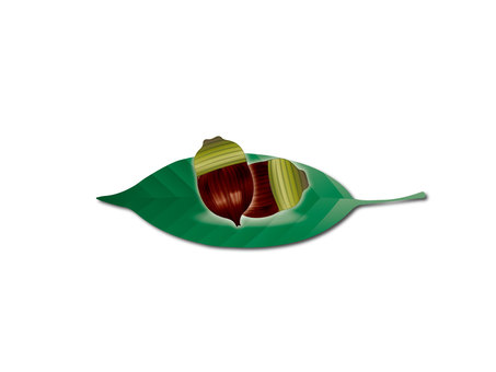 Nuts 03