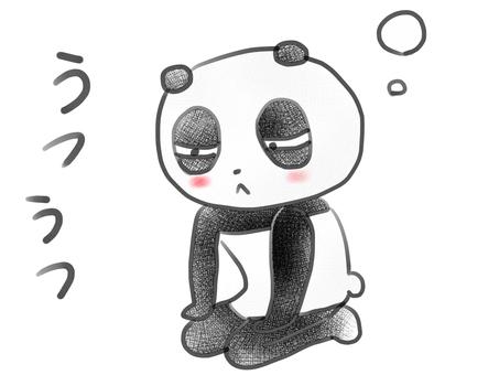 의욕이 나오지 않아 울릉도들 팬더