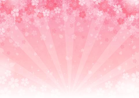 벚꽃 배경 9