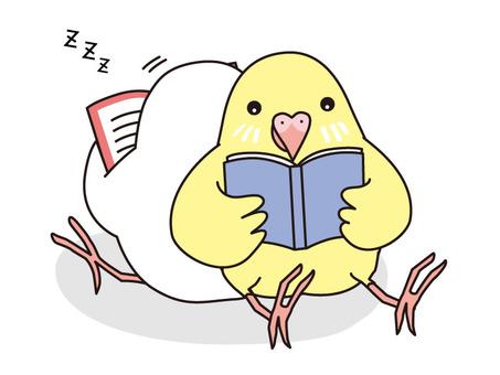 Reading & asleep parakeet