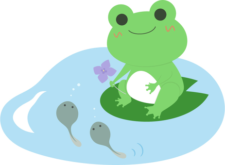 Frog _ parent and child