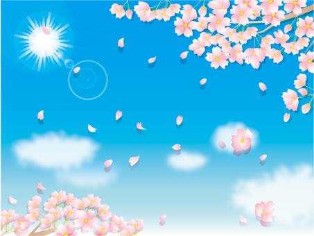 벚꽃 무늬 _ 푸른 하늘
