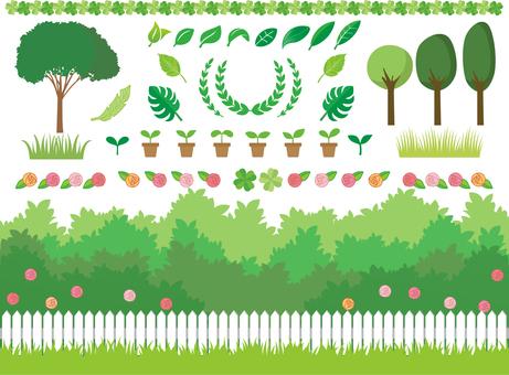 庭/グリーン/葉っぱ/木/植物いろいろ