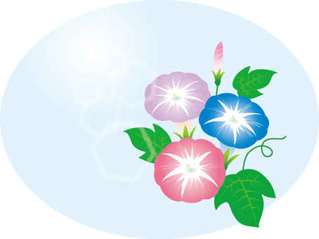 Illustration Free morning glory morning glory