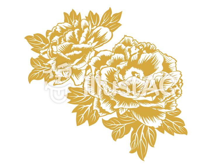 牡丹(単色)のイラスト